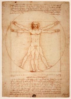 """Det udelte mennesket. Mennesket er et aktivt og selvbevisst vesen. Hjernen forbindes til resten av kroppen gjennom den undervurderte anatomiske strukturen """"hals"""". Her løper de nevroimmonologiske kommunikasjonsveien. (Foto: Leonardo Da Vinci, Wikipedia)"""